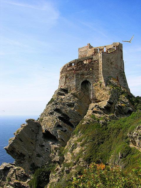 La Torre di Gorgona