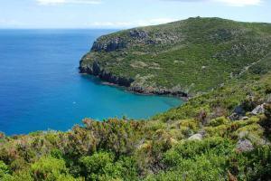 Monte Capo e la Baia della Mortola
