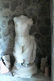 La Venere